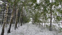 Zima w maju
