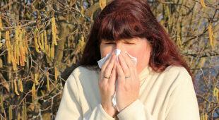 Alergolog dr Piotr Dąbrowiecki o alergii
